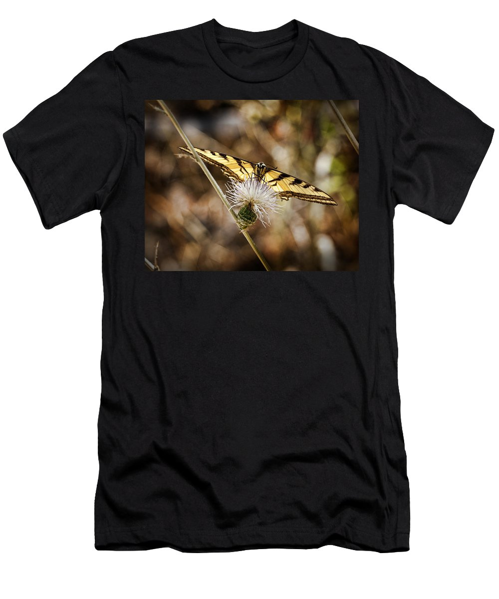Butterfly Men's T-Shirt (Athletic Fit) featuring the photograph Swallowtail Butterfly by Kelley King