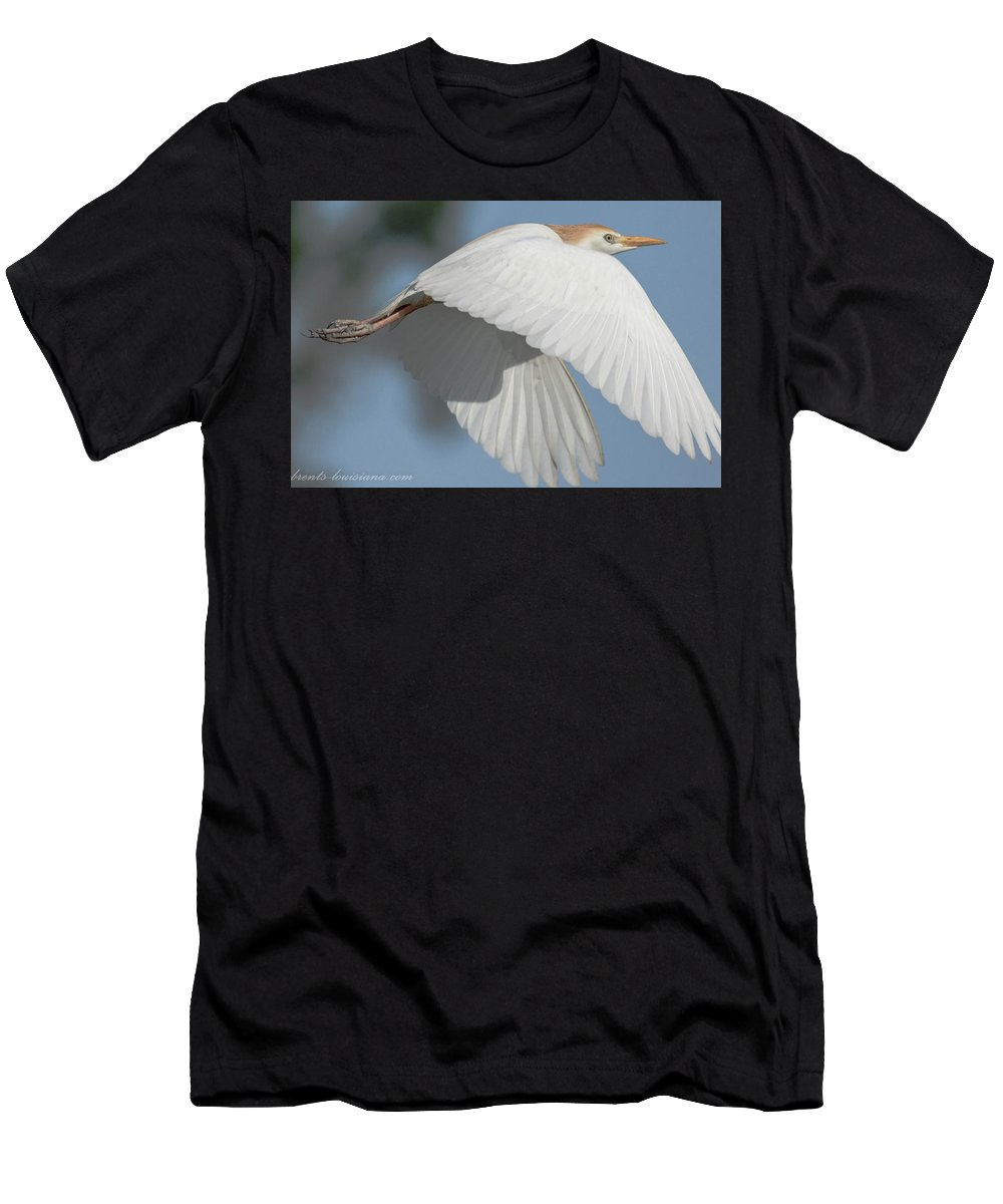 Cattle Egret Men's T-Shirt (Athletic Fit) featuring the photograph Cattle Egret In Flight by Brent Bordelon
