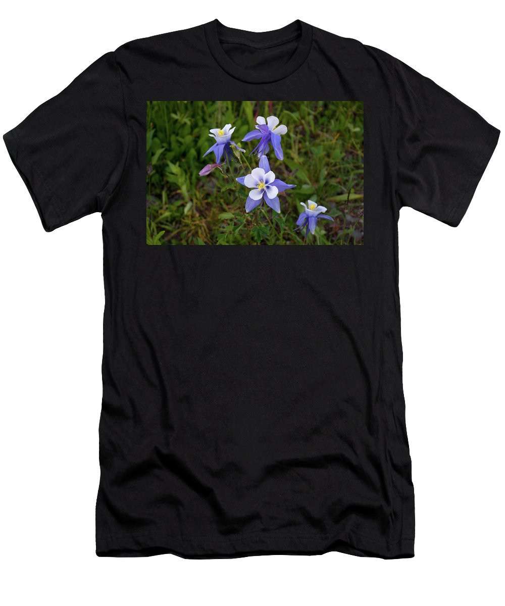 Colorado Men's T-Shirt (Athletic Fit) featuring the photograph Colorado Columbine by Steve Stuller