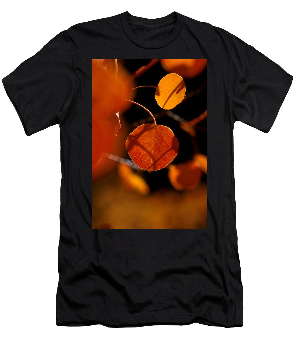 Fall Colors Men's T-Shirt (Athletic Fit) featuring the photograph Colorado Gold by Jerry McElroy