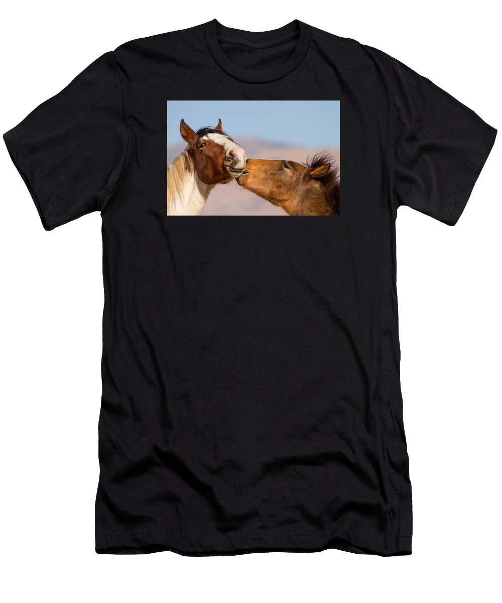 Wild Horse Men's T-Shirt (Athletic Fit) featuring the photograph Colts by Kent Keller