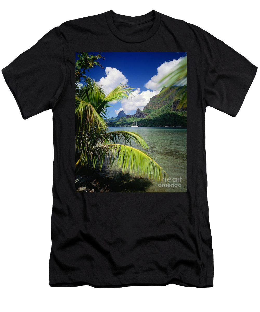 Across Men's T-Shirt (Athletic Fit) featuring the photograph Cooks Bay With Sailboat by Ron Dahlquist - Printscapes