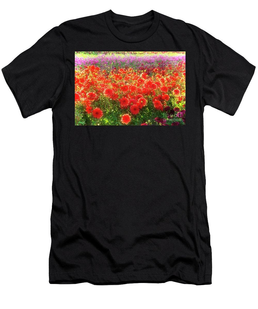 Dahlia Men's T-Shirt (Athletic Fit) featuring the photograph Dahlia Farm by Jim And Emily Bush
