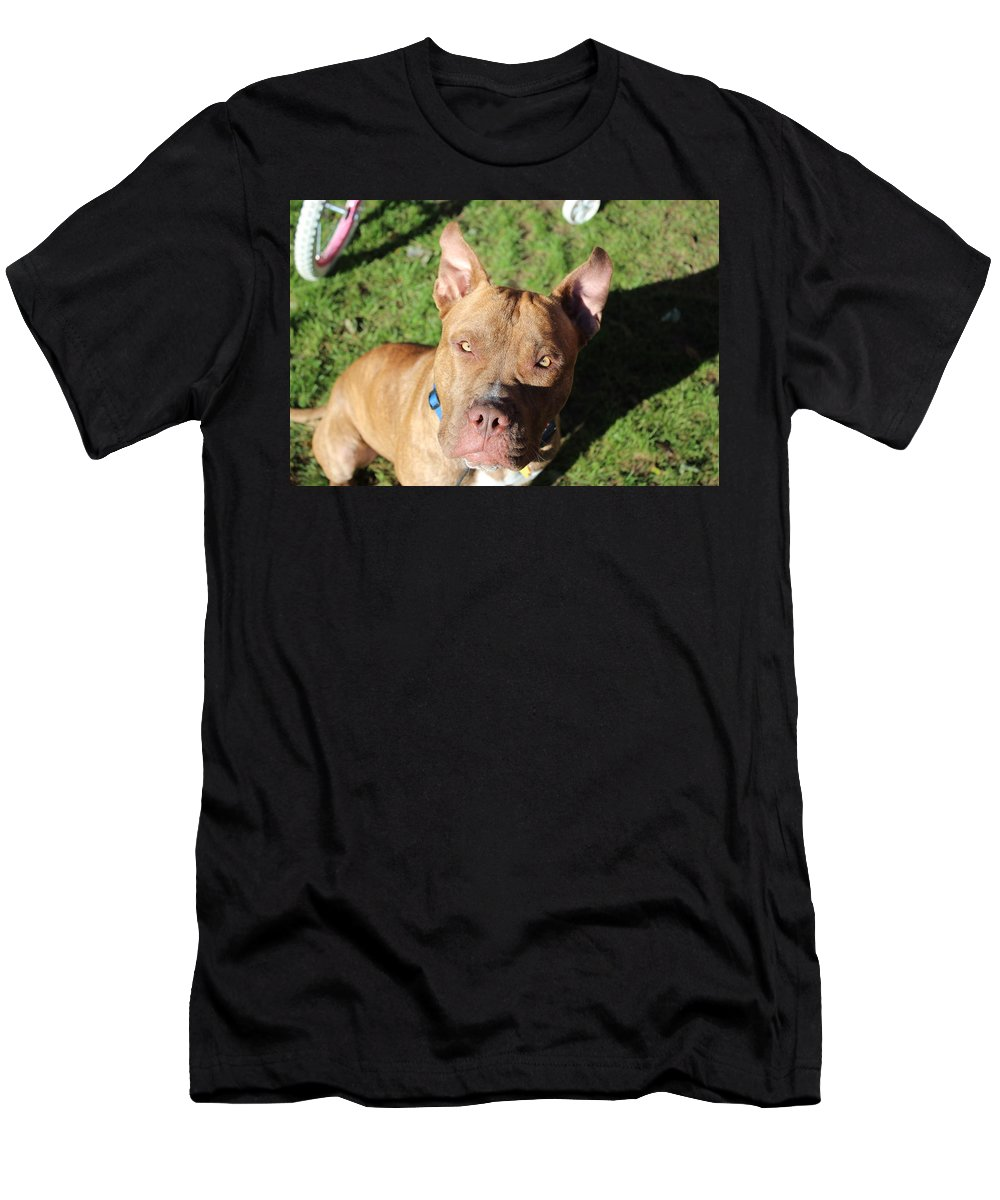 Handsome Boy Men's T-Shirt (Athletic Fit) featuring the photograph DOG by Nita Strawn