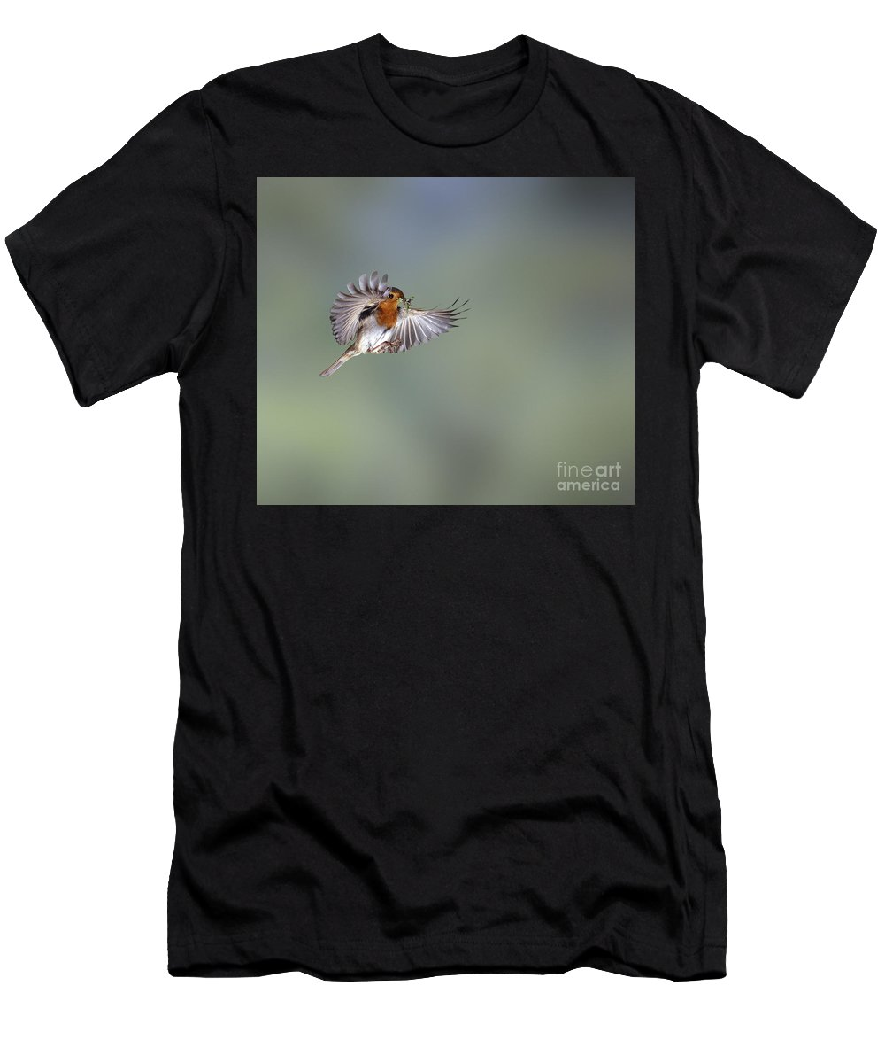 European Robin Men's T-Shirt (Athletic Fit) featuring the photograph European Robin On The Wing by Warren Photographic