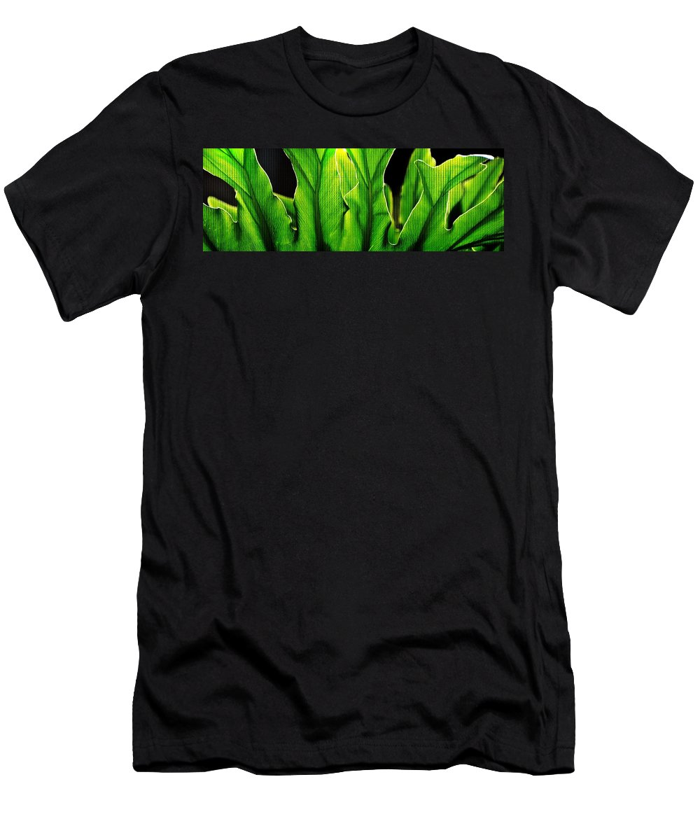 Filter; Texture; Background; Decorative; Close Up; Fresh; Green; Leaves; Sunlight; Panorama; Plant; Flora; Nature; Garden; Men's T-Shirt (Athletic Fit) featuring the photograph Fresh Green Leaves by Werner Lehmann