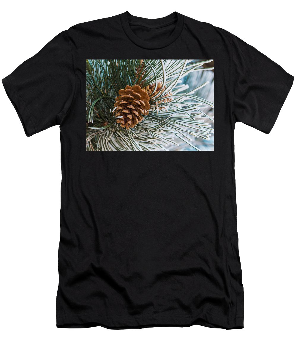 Christmas Men's T-Shirt (Athletic Fit) featuring the photograph Frosty Pine Needles And Pine Cones by Dawn Key