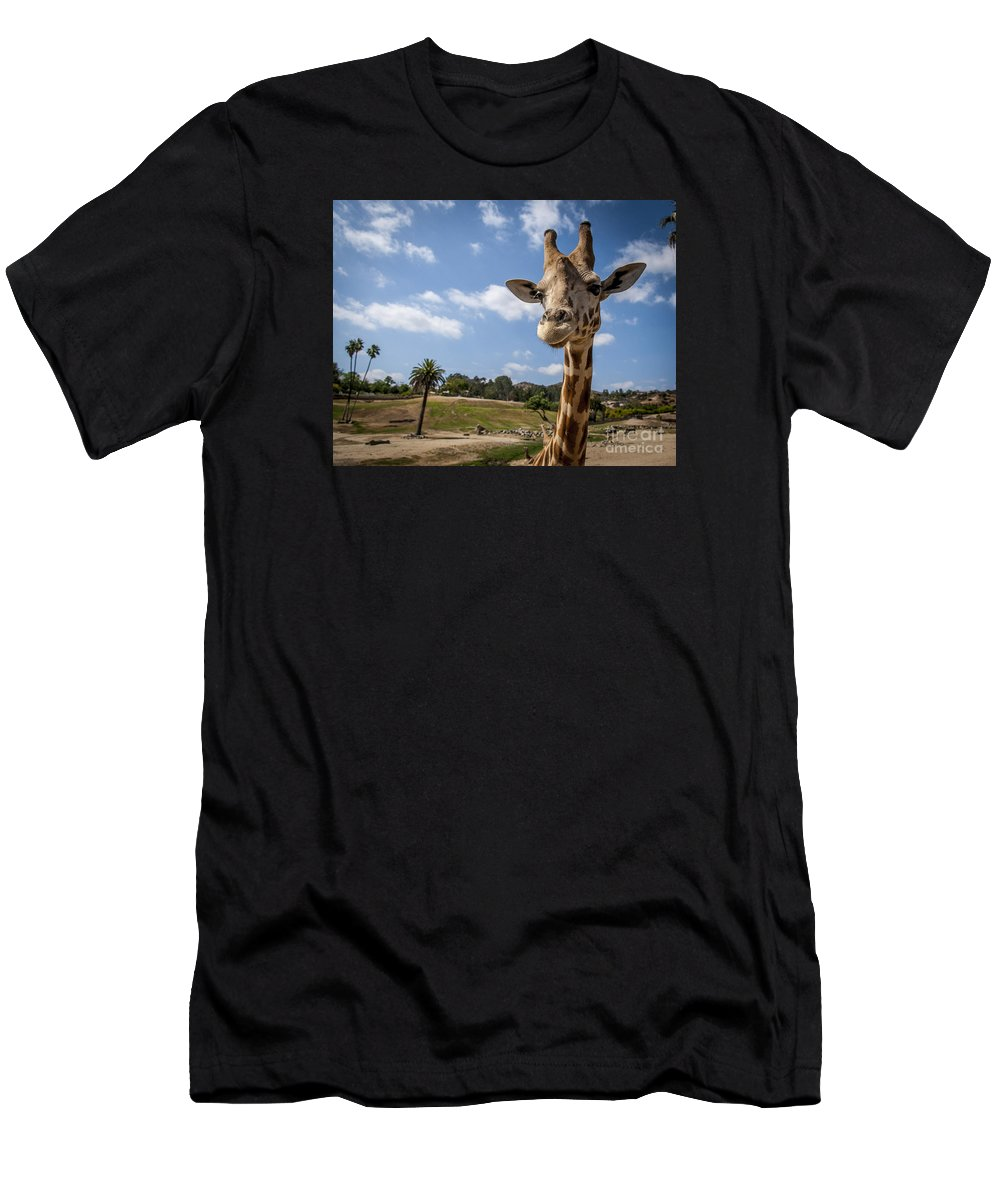 Giraffe Men's T-Shirt (Athletic Fit) featuring the photograph Giraffe Portrait by Rich Governali