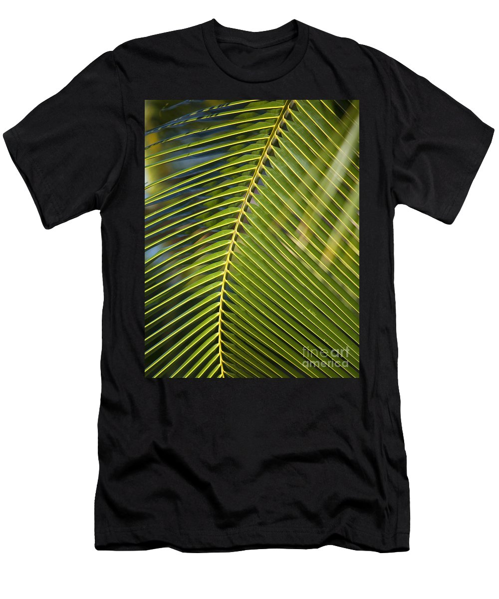 Angle Men's T-Shirt (Athletic Fit) featuring the photograph Green Palm Leaf by Ron Dahlquist - Printscapes