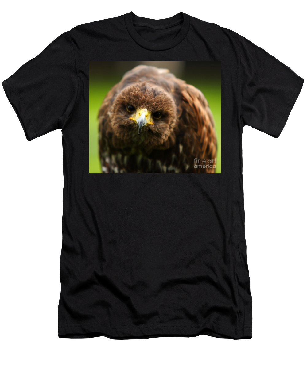 Buzzard Men's T-Shirt (Athletic Fit) featuring the photograph Hello Mate by Angel Ciesniarska