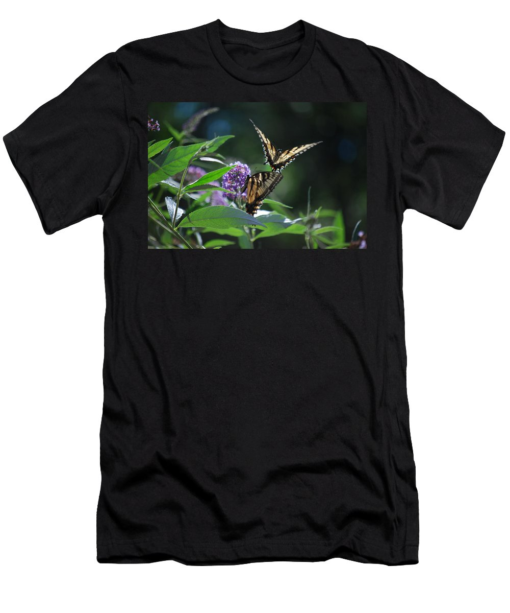 Swallowtail Men's T-Shirt (Athletic Fit) featuring the photograph Here I Come by Lori Tambakis