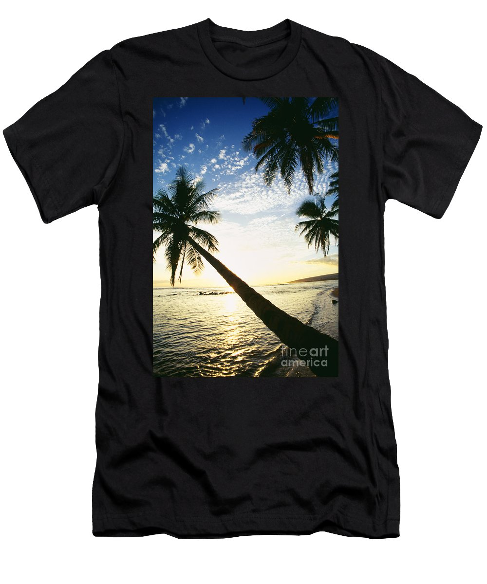 Afternoon Men's T-Shirt (Athletic Fit) featuring the photograph Kauai, Waimea by Peter French - Printscapes