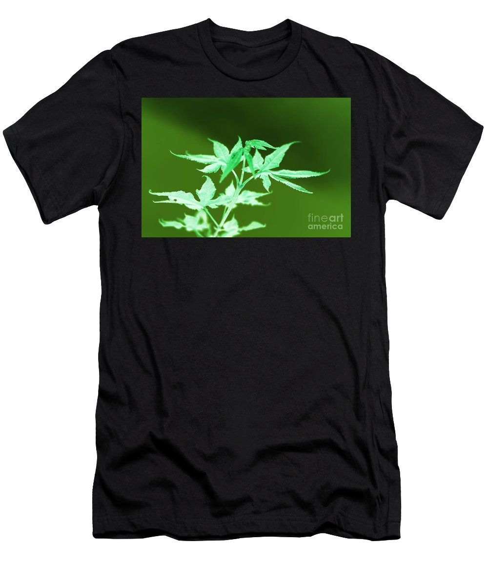 Leaves Men's T-Shirt (Athletic Fit) featuring the photograph Leaves by Anita Goel