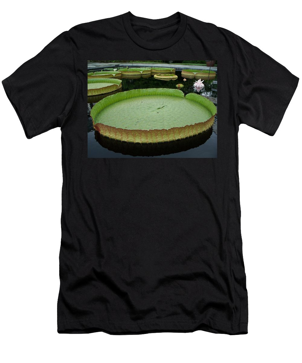 Lily Men's T-Shirt (Athletic Fit) featuring the painting Lily Pads by Eric Schiabor