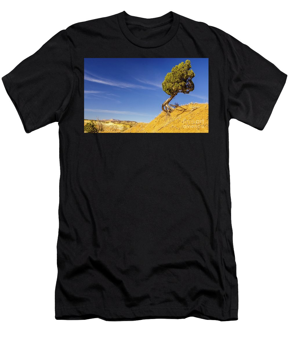 Johnson Canyon Men's T-Shirt (Athletic Fit) featuring the photograph Looking Out by Jerry Sellers