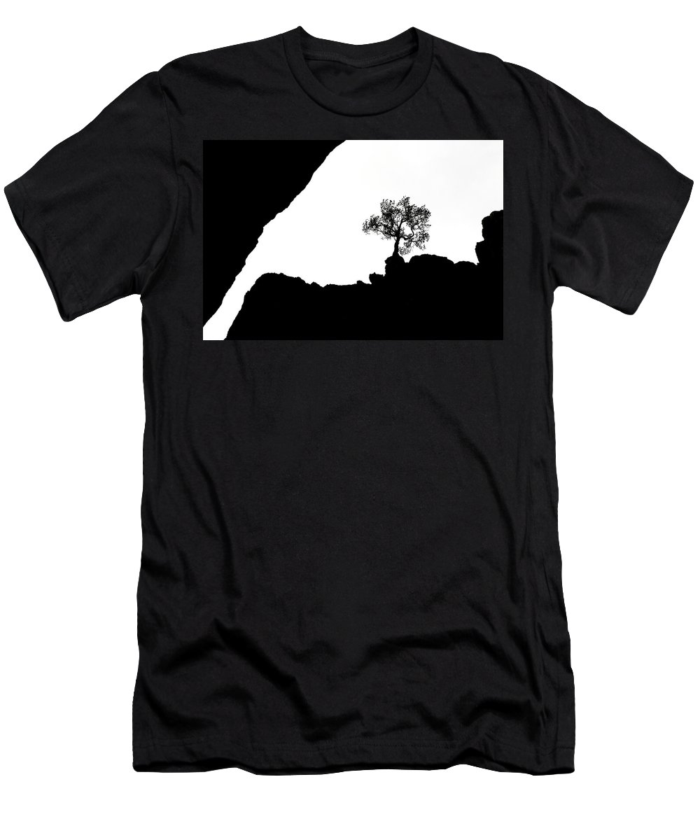Tree Men's T-Shirt (Athletic Fit) featuring the photograph Looking Up by Marilyn Hunt