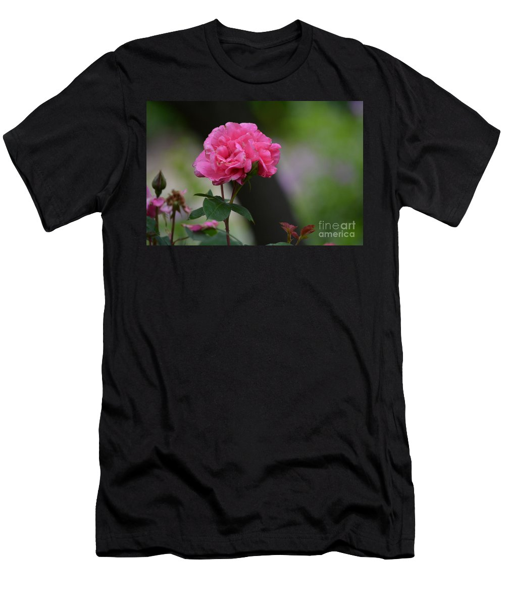 Lovely Pink Rose Prints Men's T-Shirt (Athletic Fit) featuring the photograph Lovely Pink Rose by Ruth Housley