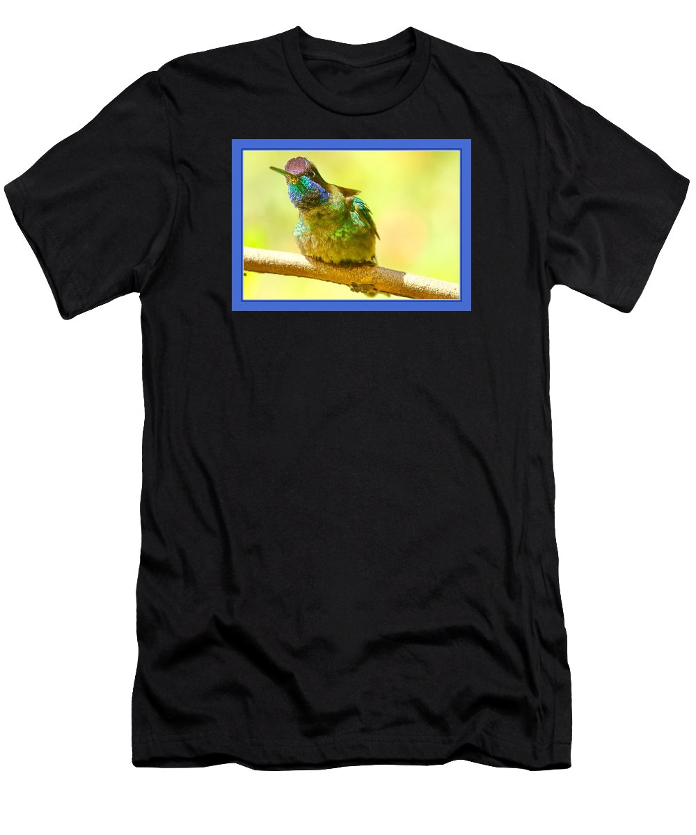 Hummingbird Men's T-Shirt (Athletic Fit) featuring the photograph Magnificent by BYETPhotography