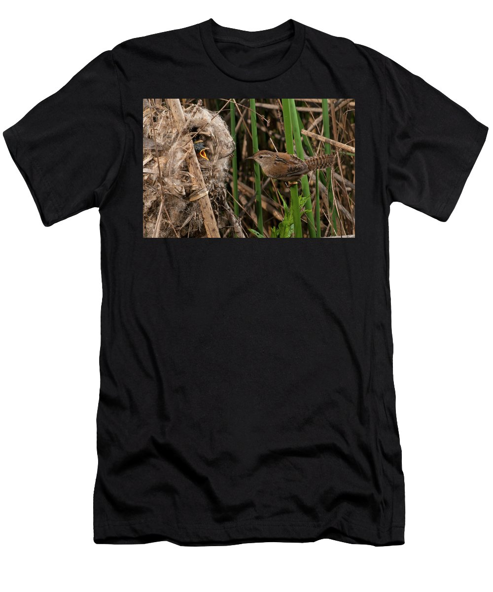 Portrait Men's T-Shirt (Athletic Fit) featuring the photograph Marshy Visit by Damon Calderwood