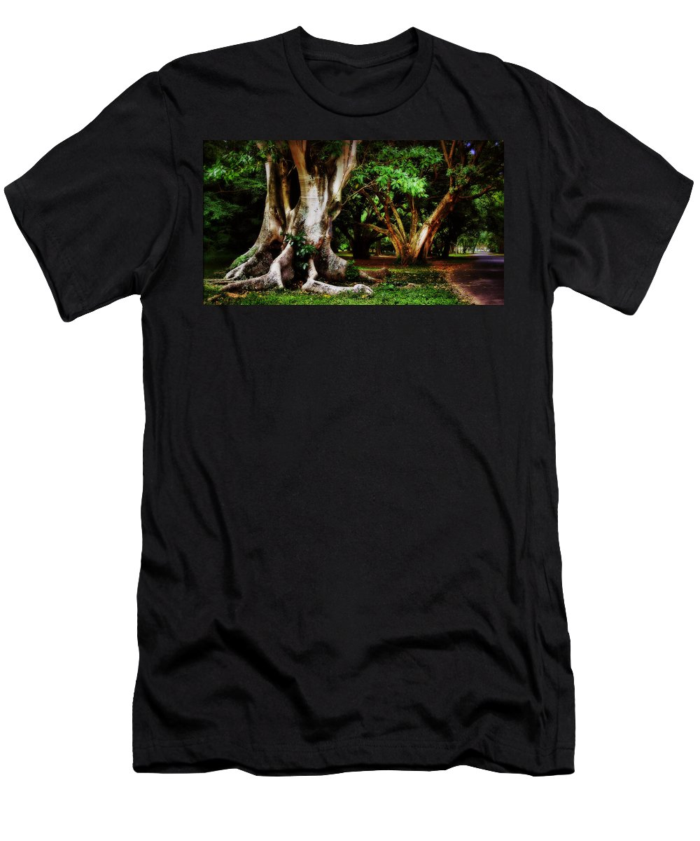 Trees Garden Green Brown Men's T-Shirt (Athletic Fit) featuring the photograph Old Freinds by Galeria Trompiz
