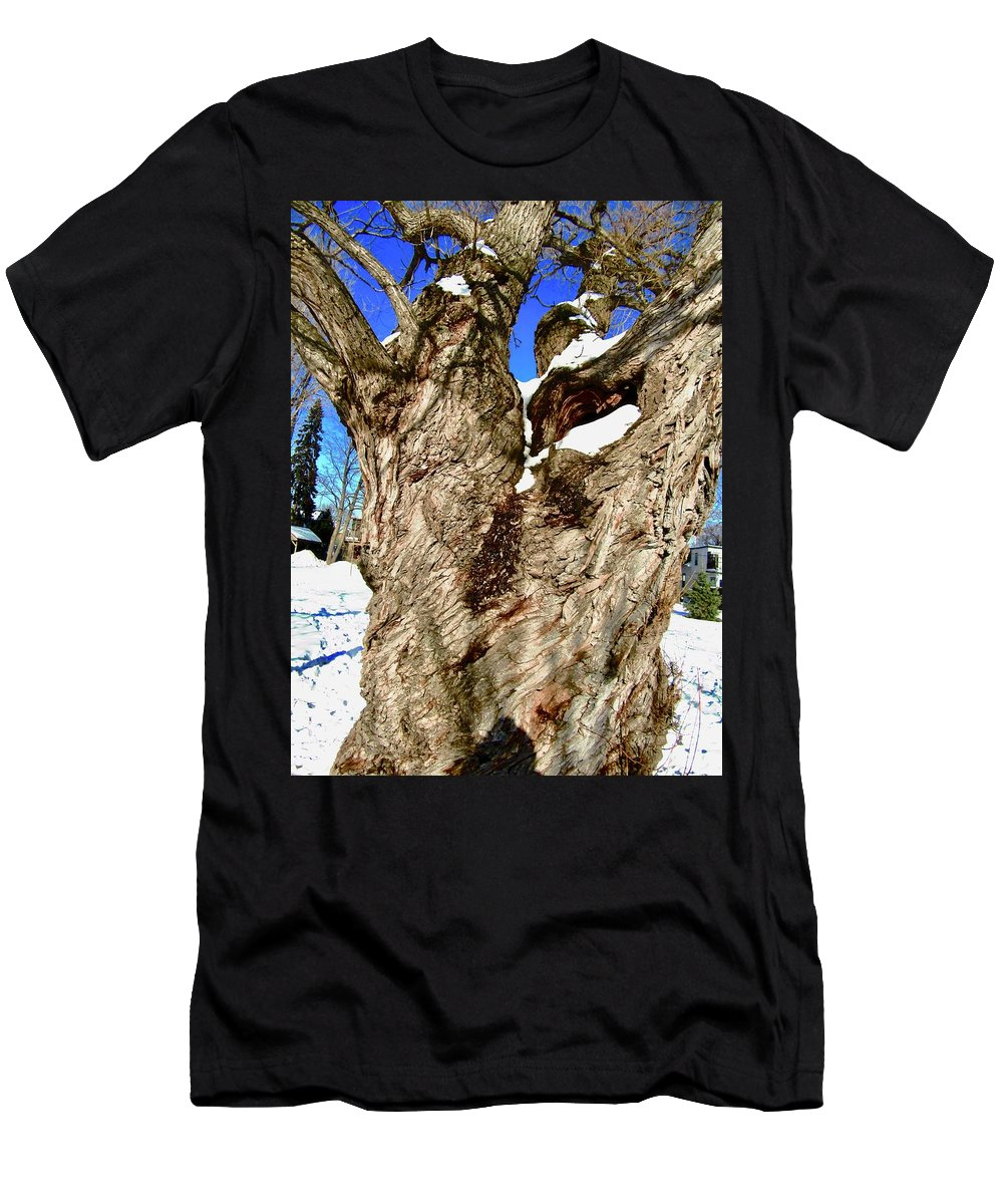 Tree Men's T-Shirt (Athletic Fit) featuring the photograph Old Willow Tree by Stephanie Moore