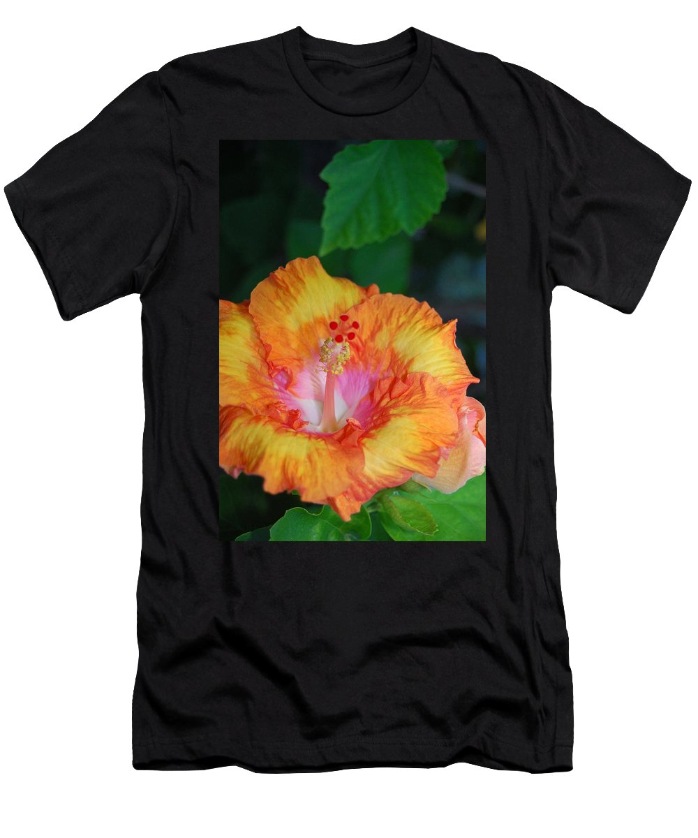 Flower Men's T-Shirt (Athletic Fit) featuring the photograph Orange Hibiscus by Amy Fose