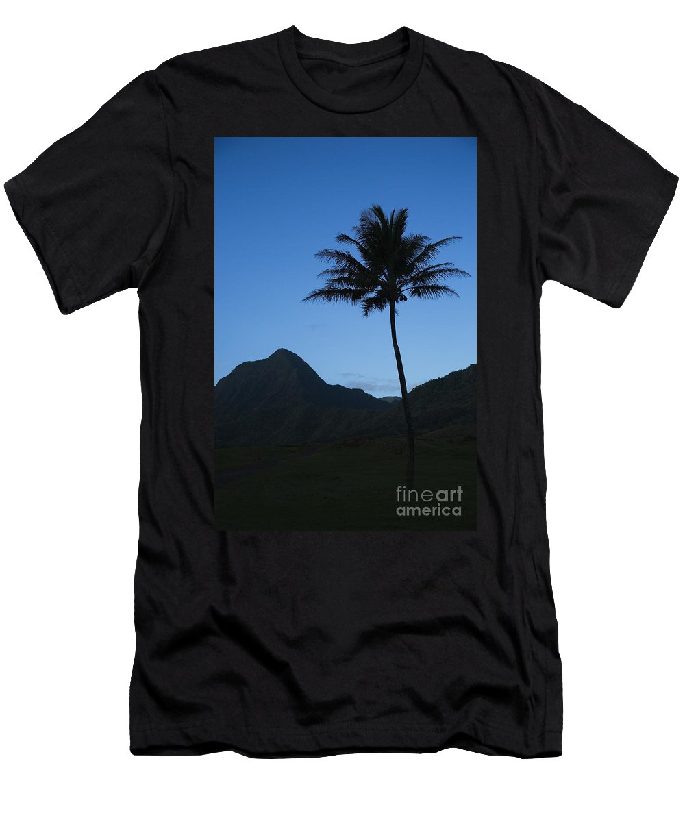 Bright Men's T-Shirt (Athletic Fit) featuring the photograph Palm And Blue Sky by Dana Edmunds - Printscapes