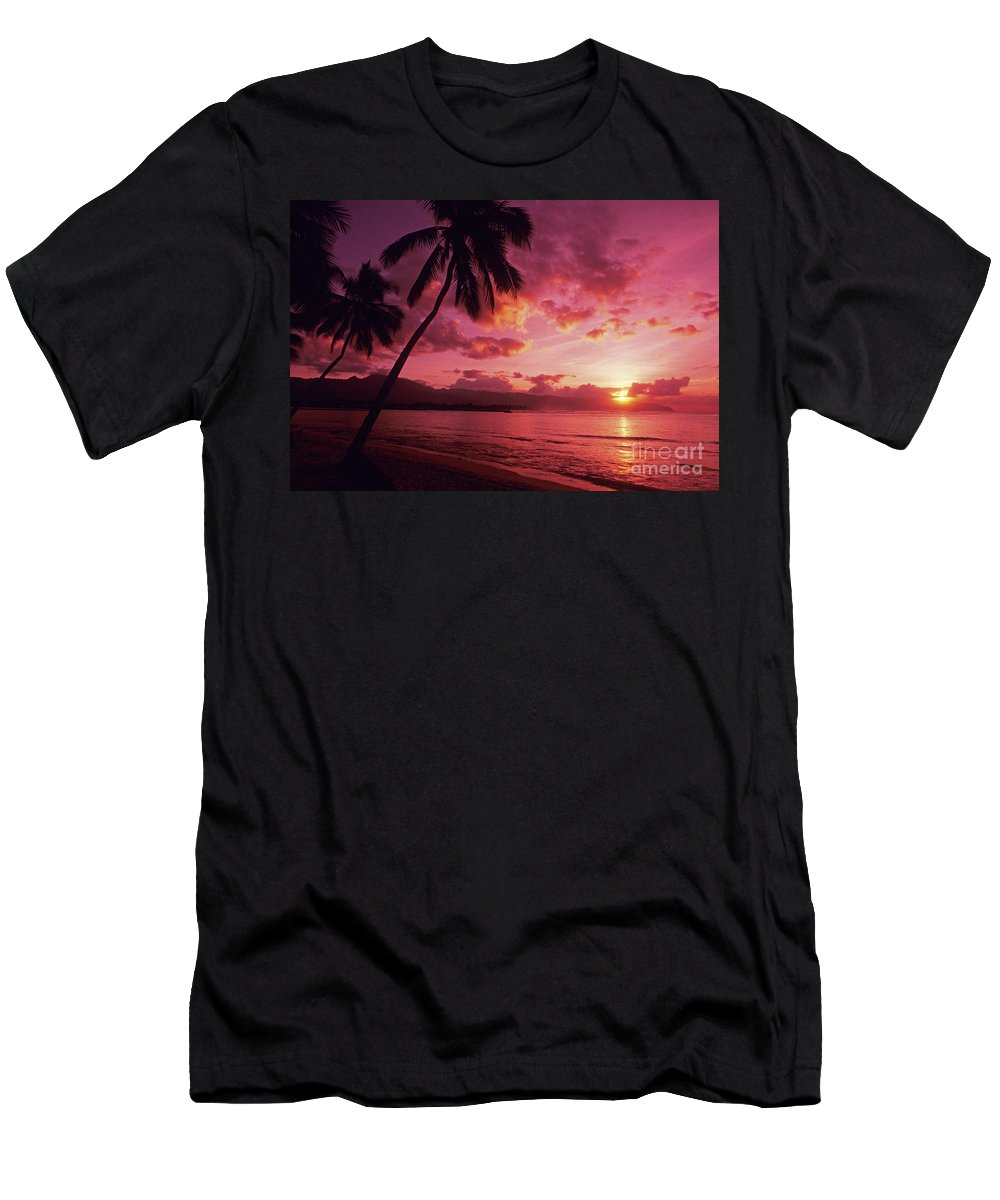 Beach Men's T-Shirt (Athletic Fit) featuring the photograph Palms Against Pink Sunset by Carl Shaneff - Printscapes
