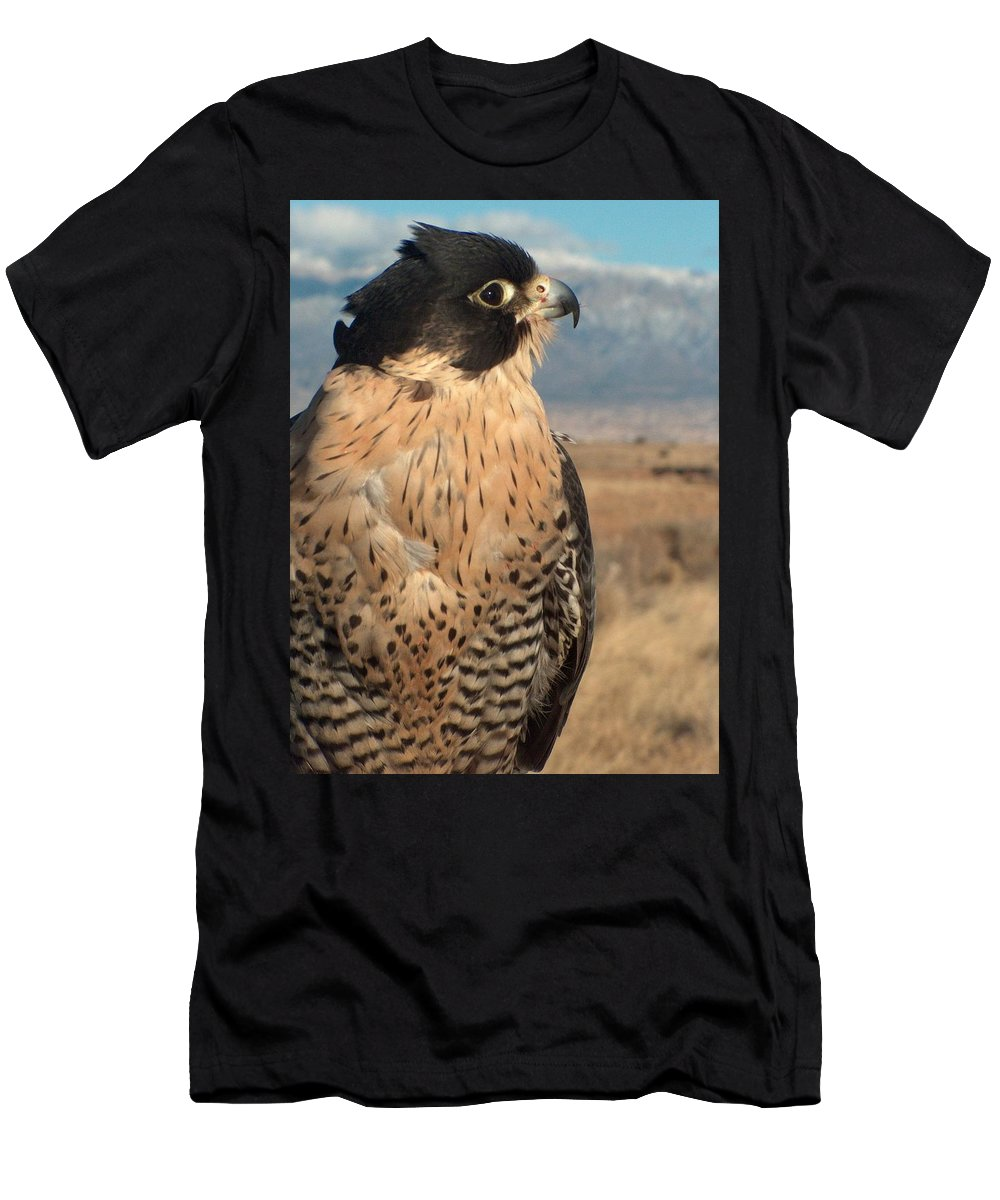 Peregrine Falcon Men's T-Shirt (Athletic Fit) featuring the photograph Peregrine Falcon by Tim McCarthy