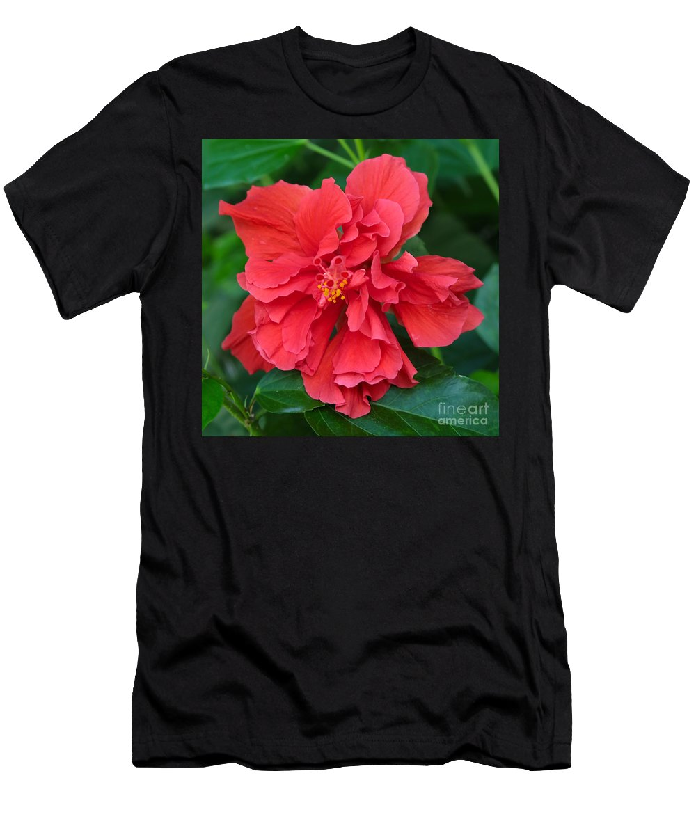 Hibiscus Men's T-Shirt (Athletic Fit) featuring the photograph Red Hibiscus by Carol Groenen