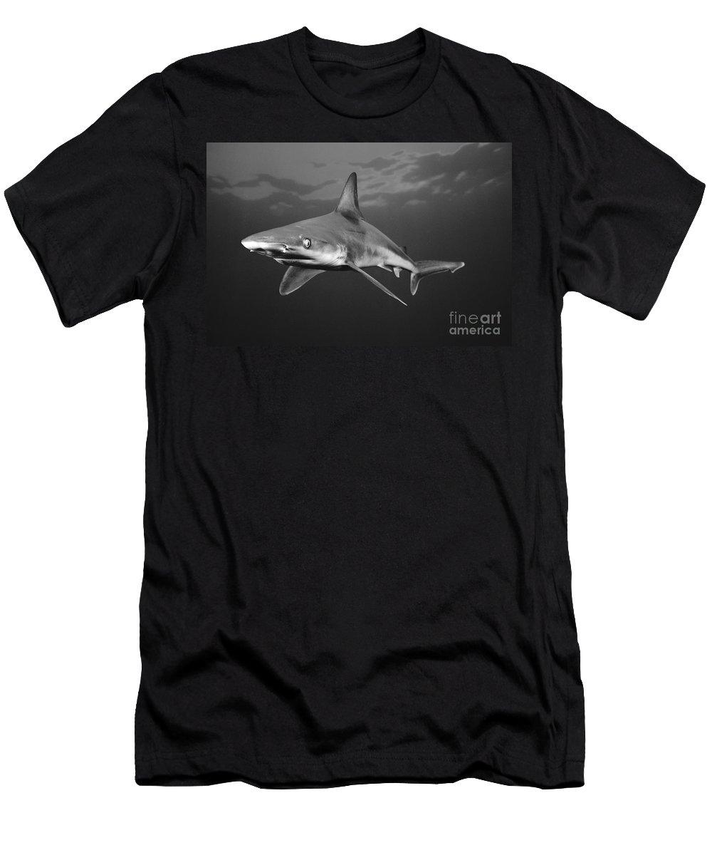 Animal Art Men's T-Shirt (Athletic Fit) featuring the photograph Sandbar Shark by Dave Fleetham - Printscapes