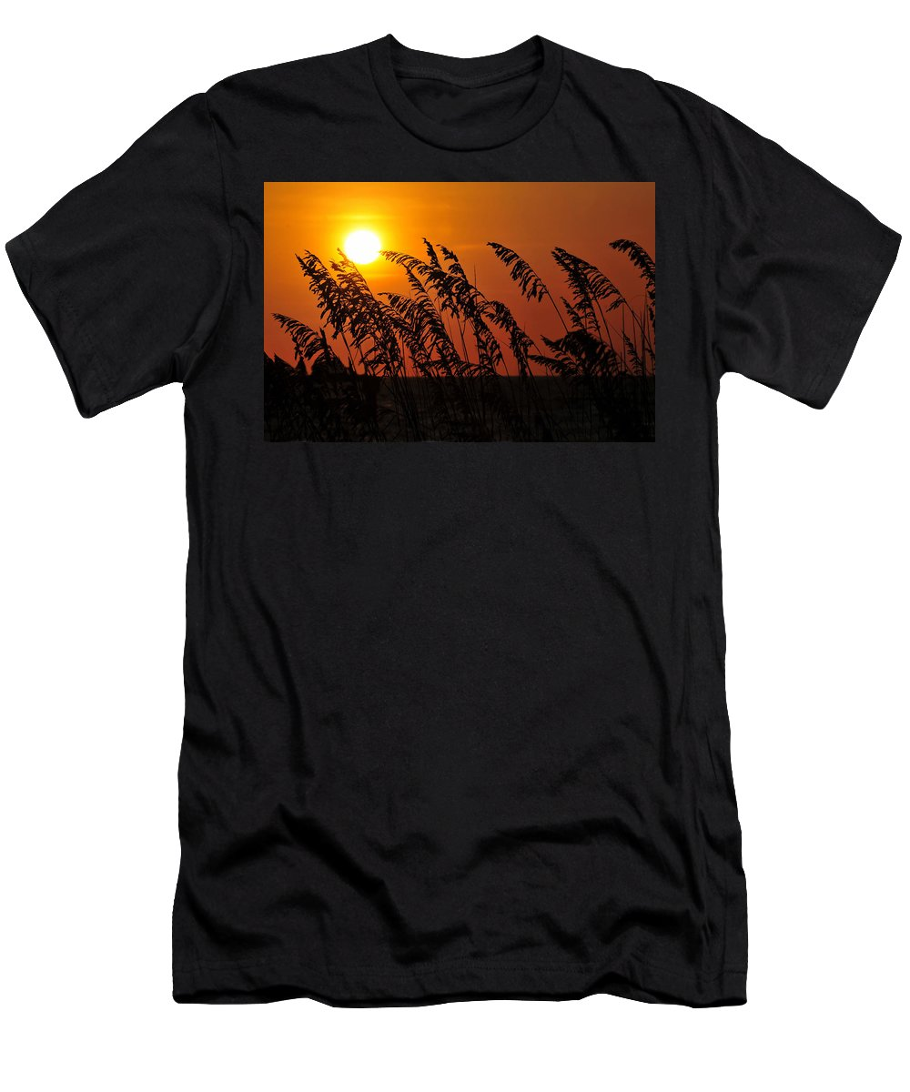 Fine Art Photography Men's T-Shirt (Athletic Fit) featuring the photograph Sea Oats At Sunset by David Lee Thompson