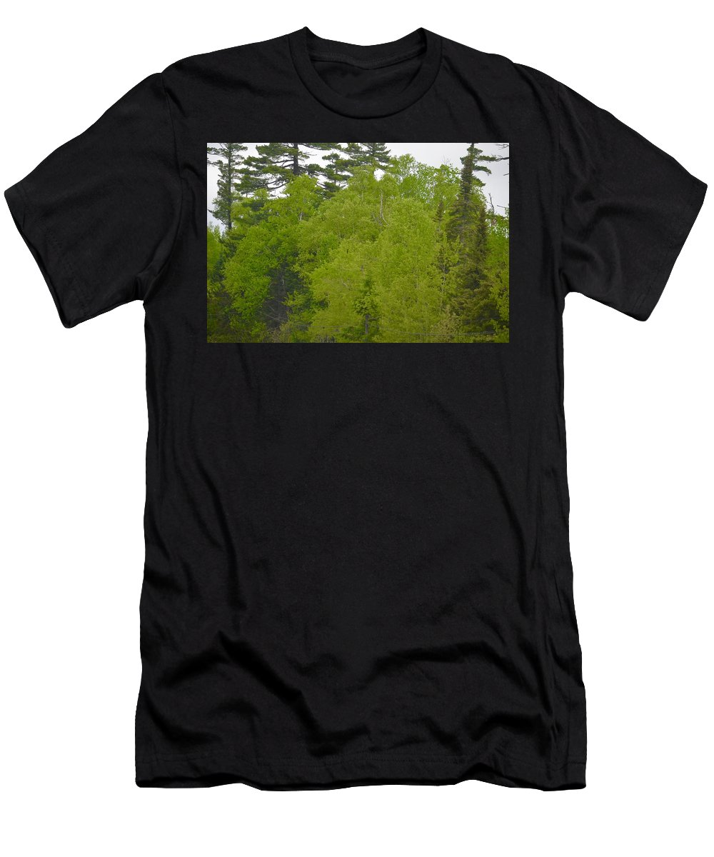 Spring Green Men's T-Shirt (Athletic Fit) featuring the photograph Spring Green by Hella Buchheim