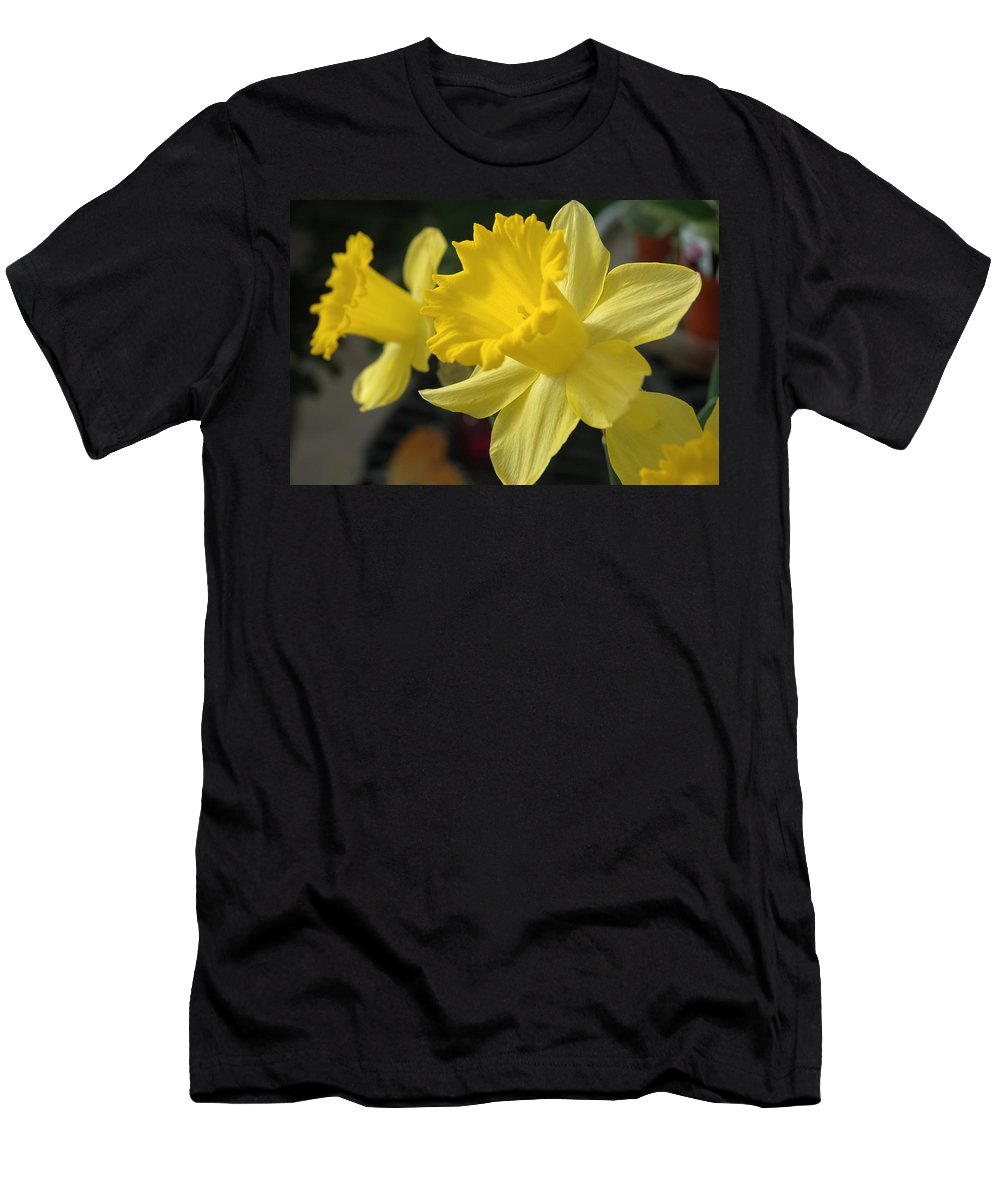 Daffodil Men's T-Shirt (Athletic Fit) featuring the photograph Spring Yellow by Jerry McElroy