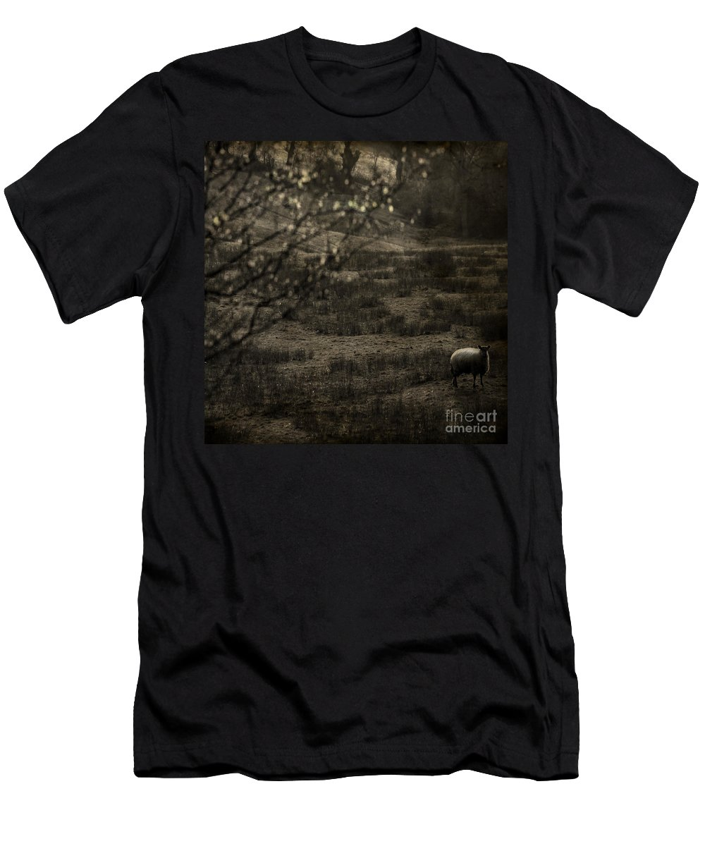 Easter Men's T-Shirt (Athletic Fit) featuring the photograph The Countryside by Angel Ciesniarska