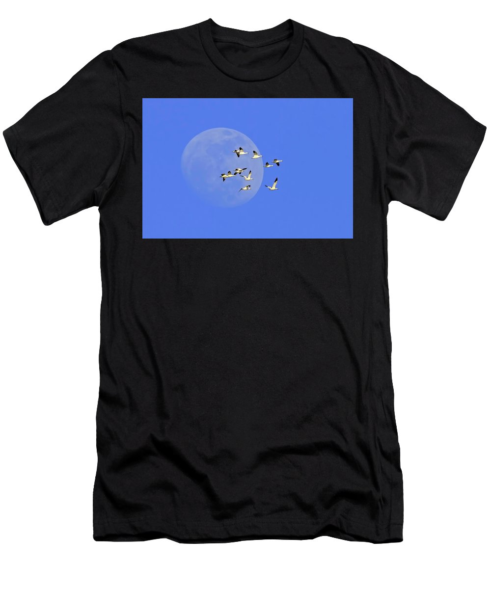 Freezeout Lake Men's T-Shirt (Athletic Fit) featuring the photograph The Journey by Jack Bell