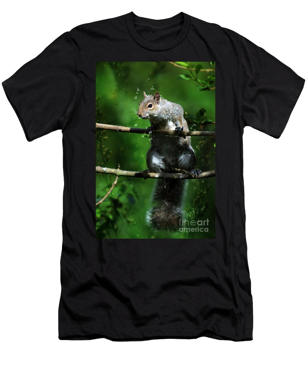 Squirrel Men's T-Shirt (Athletic Fit) featuring the photograph The Squirrel From Fairyland by Angel Ciesniarska