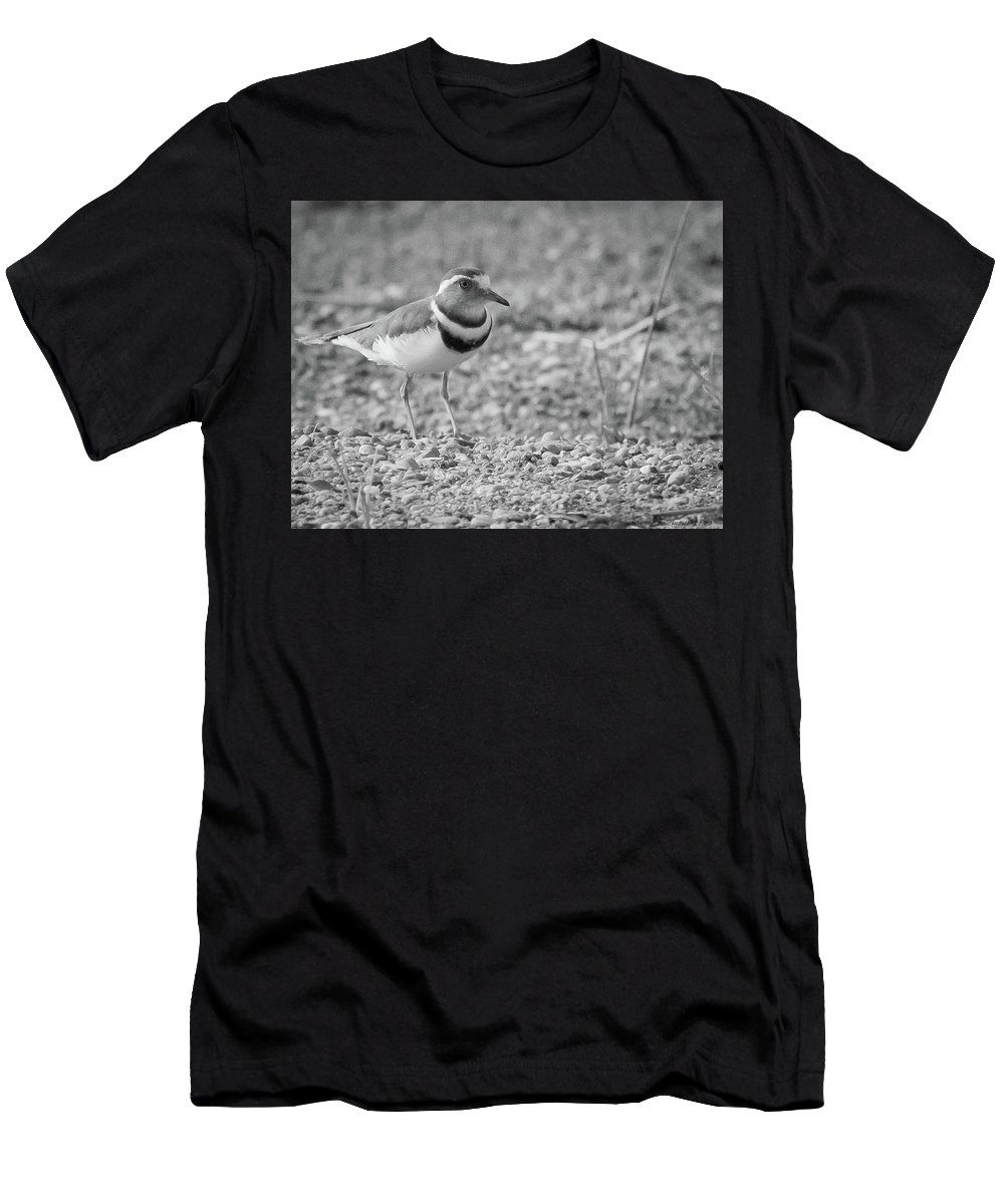 Gariep Men's T-Shirt (Athletic Fit) featuring the photograph Three Banded Plover by Melanie Meyer