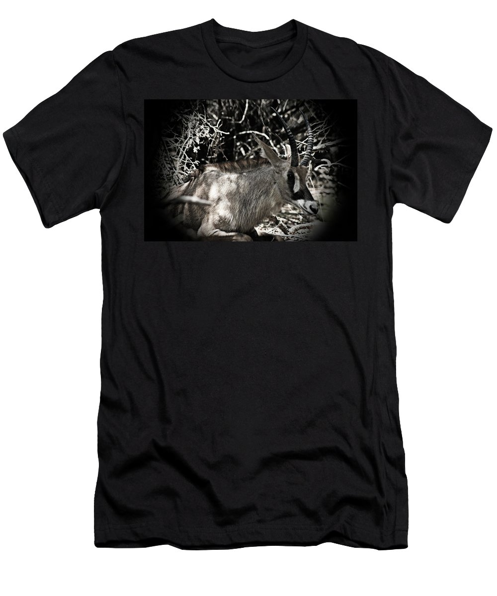 Oryx Men's T-Shirt (Athletic Fit) featuring the photograph Time-out by Douglas Barnard