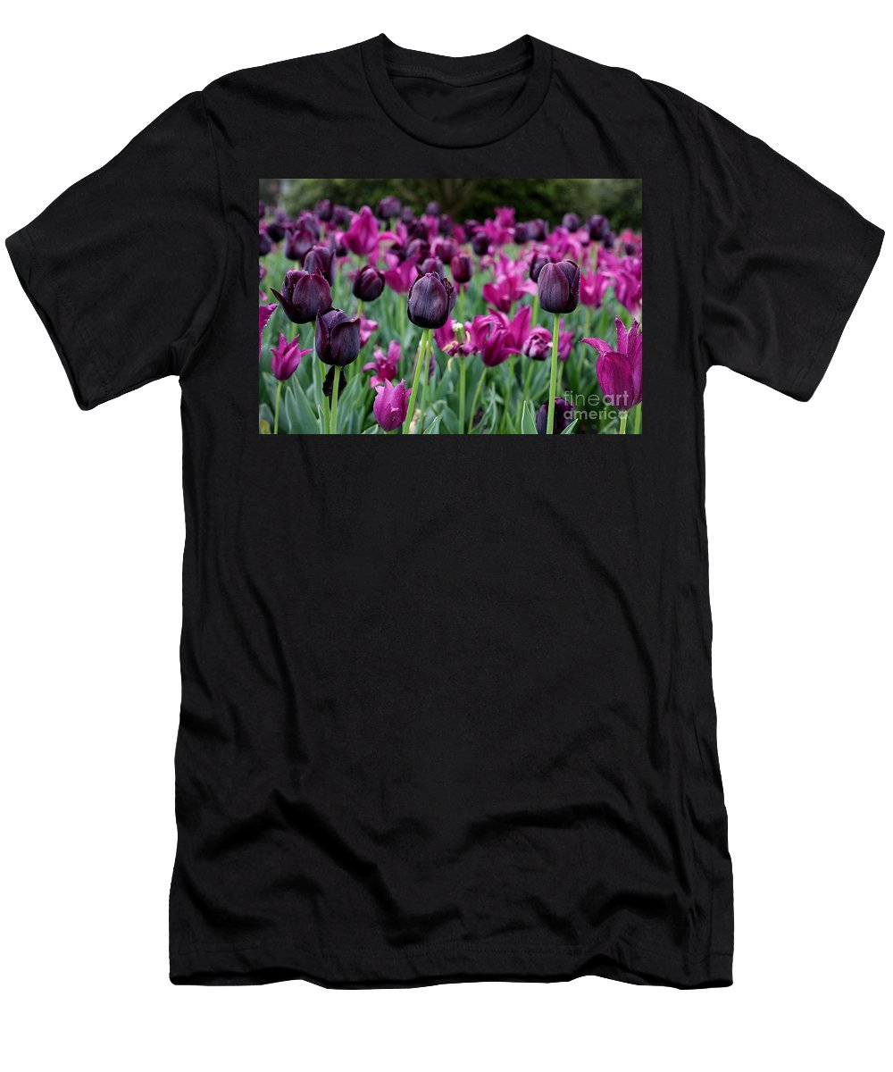 Purple Men's T-Shirt (Athletic Fit) featuring the photograph Tulips by Traci Law