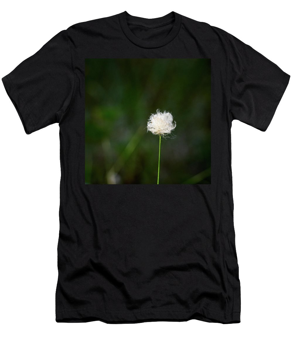 Finland Men's T-Shirt (Athletic Fit) featuring the photograph Tussock Cottongrass by Jouko Lehto