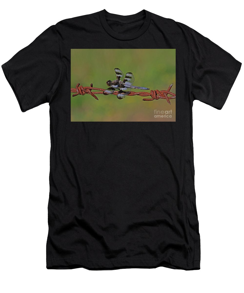 Twelve-spotted Skimmer Men's T-Shirt (Athletic Fit) featuring the photograph Twelve-spotted Skimmer by Gary Wing