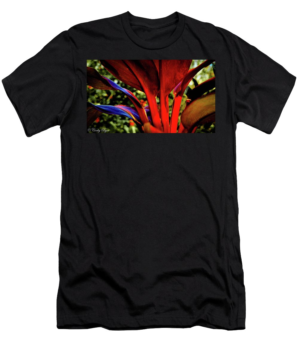 Flower Men's T-Shirt (Athletic Fit) featuring the photograph Variegated Ti Leaves by Corky Byer