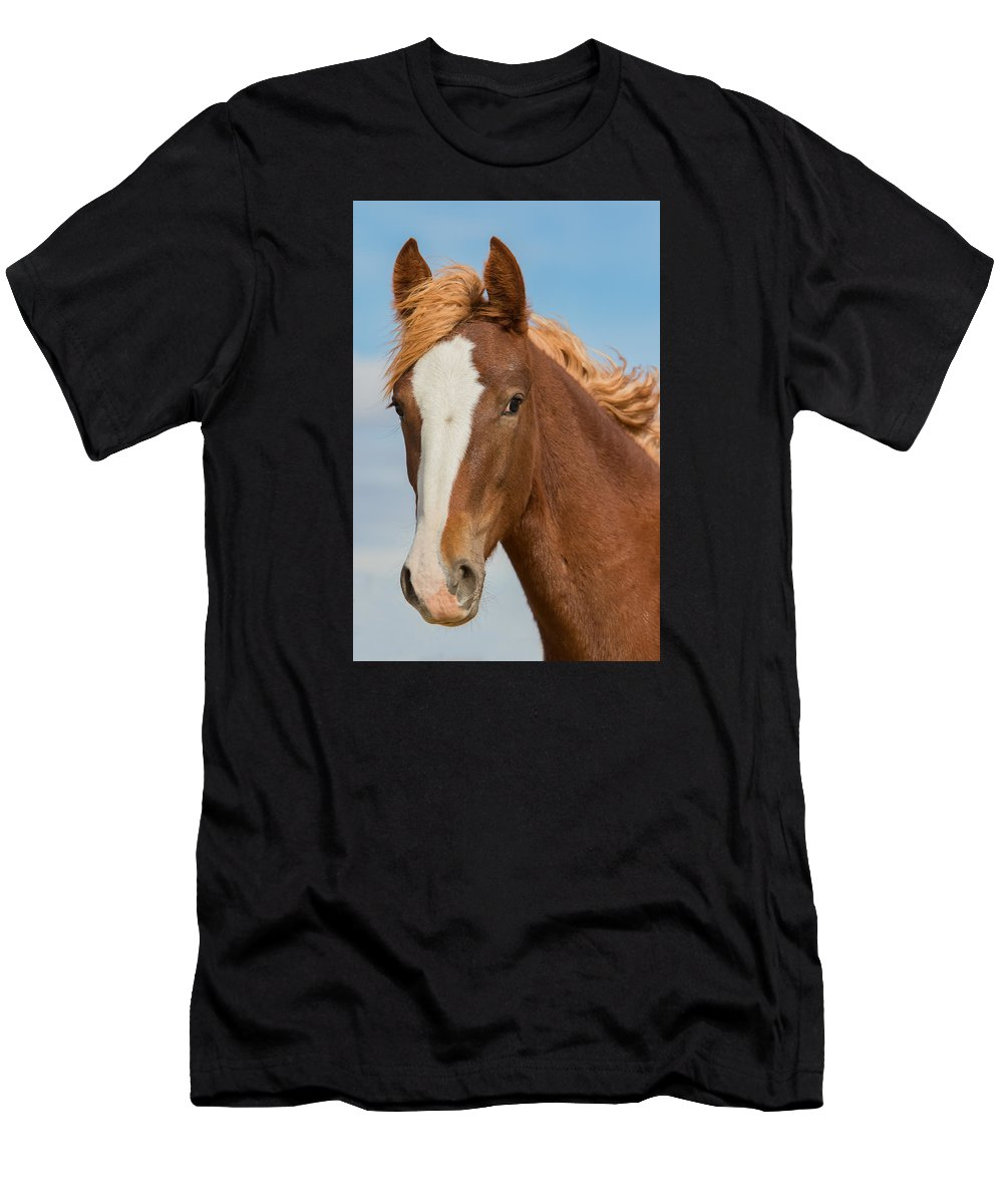 Wild Horse Men's T-Shirt (Athletic Fit) featuring the photograph Wild Foal by Kent Keller