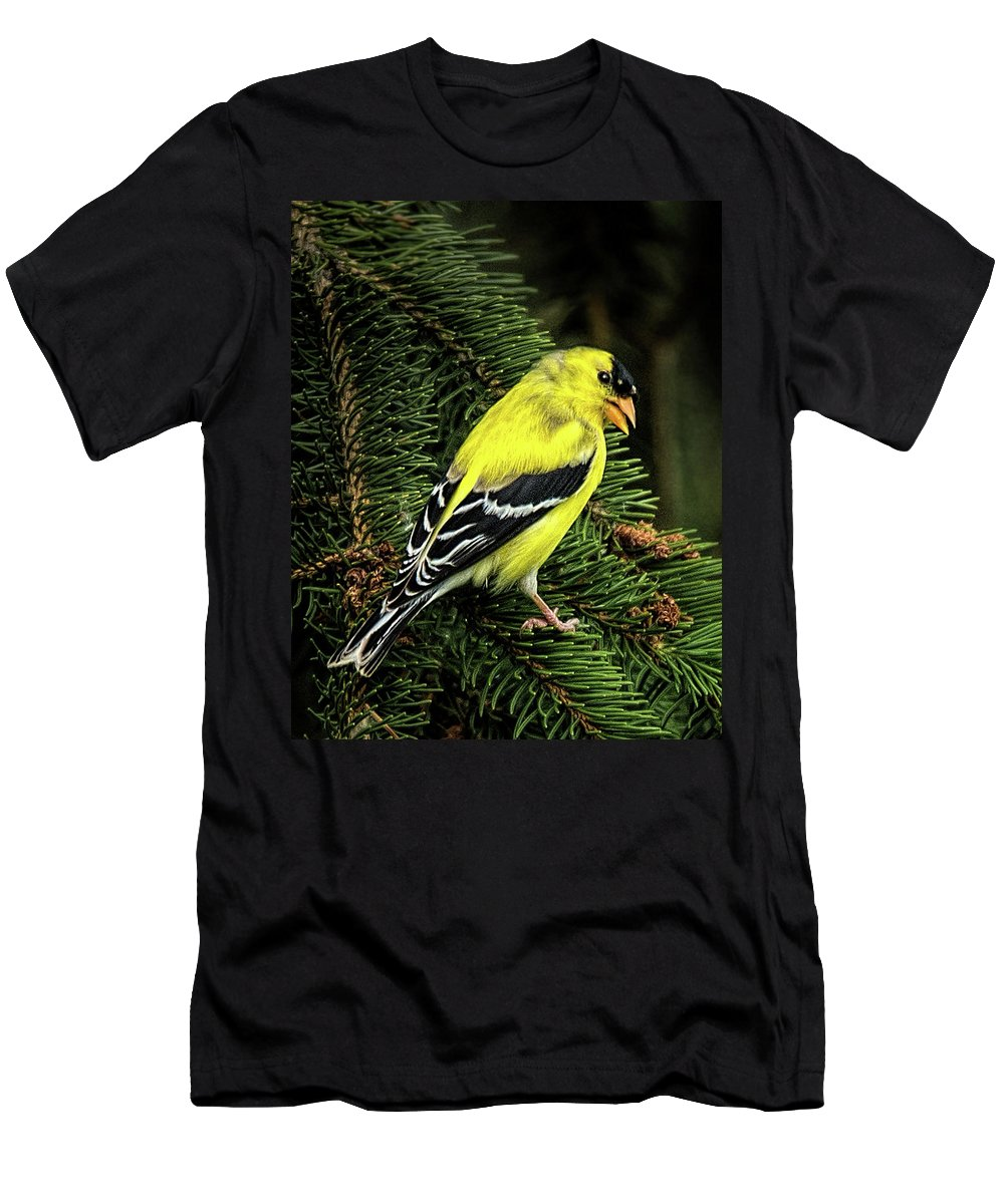 Yellow Finch Men's T-Shirt (Athletic Fit) featuring the photograph Yellow Finch by Joe Granita
