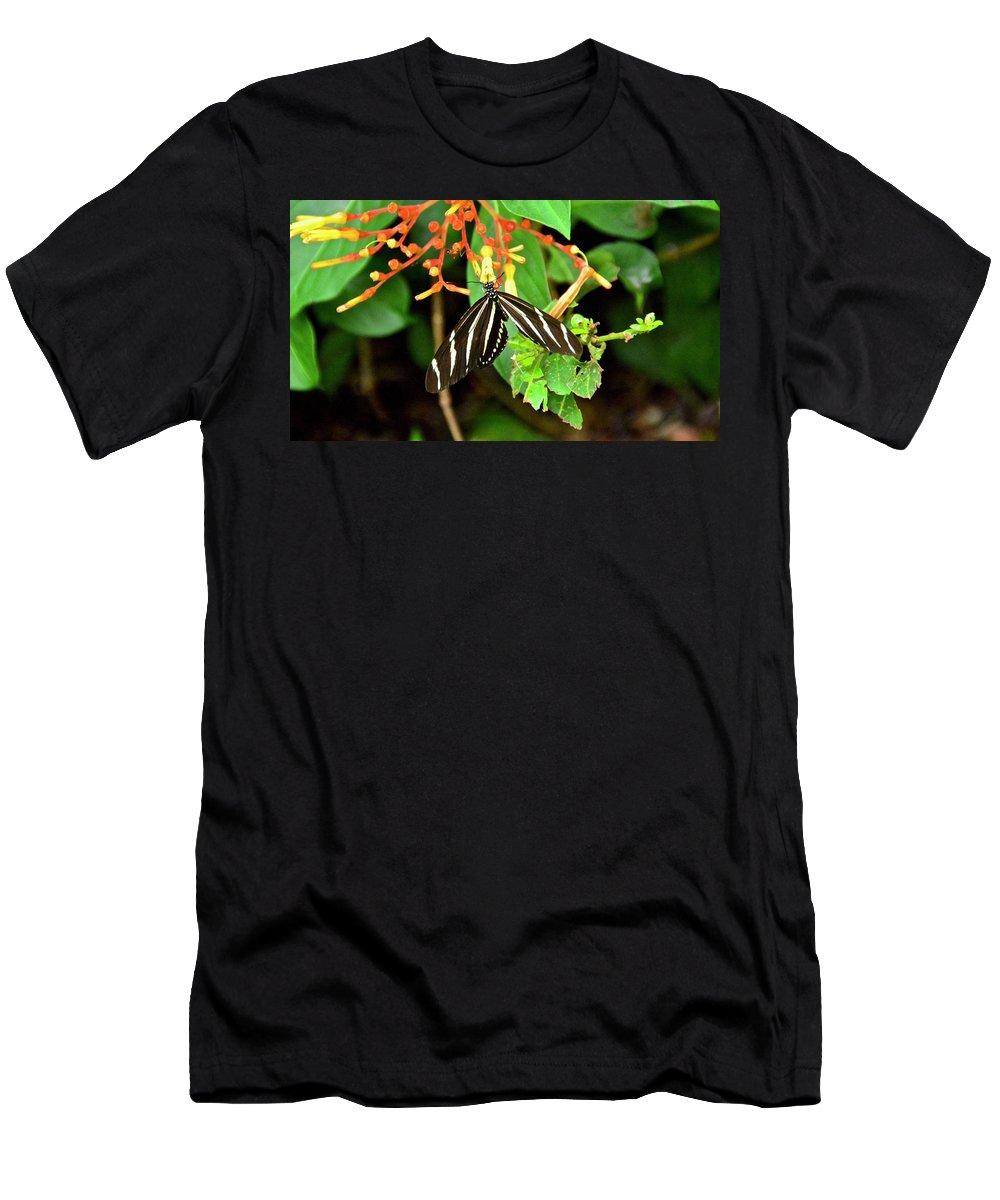 Firebush Men's T-Shirt (Athletic Fit) featuring the photograph Zebra Longwing On Firebush by Carol Bradley