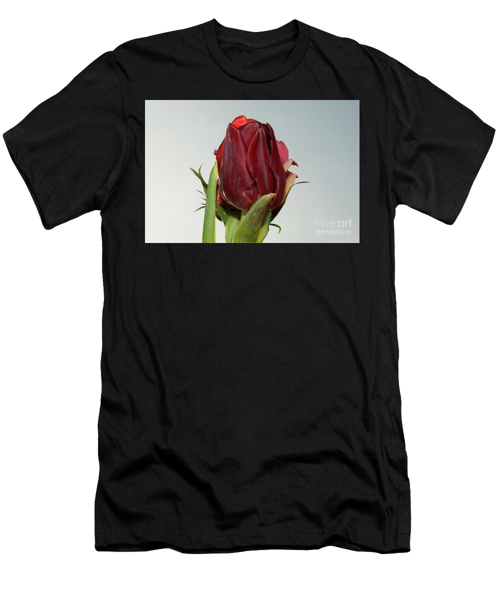 Flowers Men's T-Shirt (Athletic Fit) featuring the photograph Nice Tulip by Elvira Ladocki