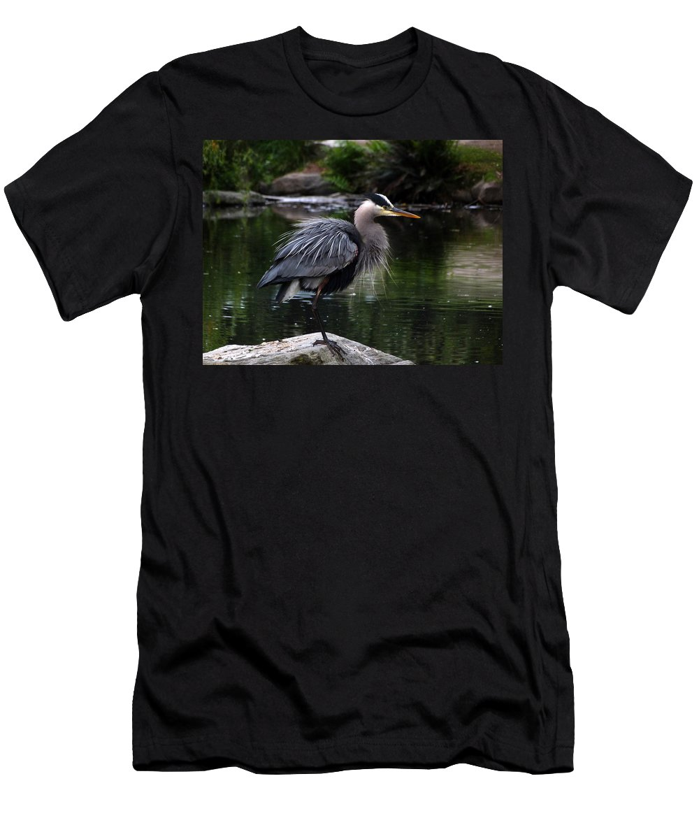 Great Blue Heron Men's T-Shirt (Athletic Fit) featuring the photograph 20-05-16 by Darrell MacIver