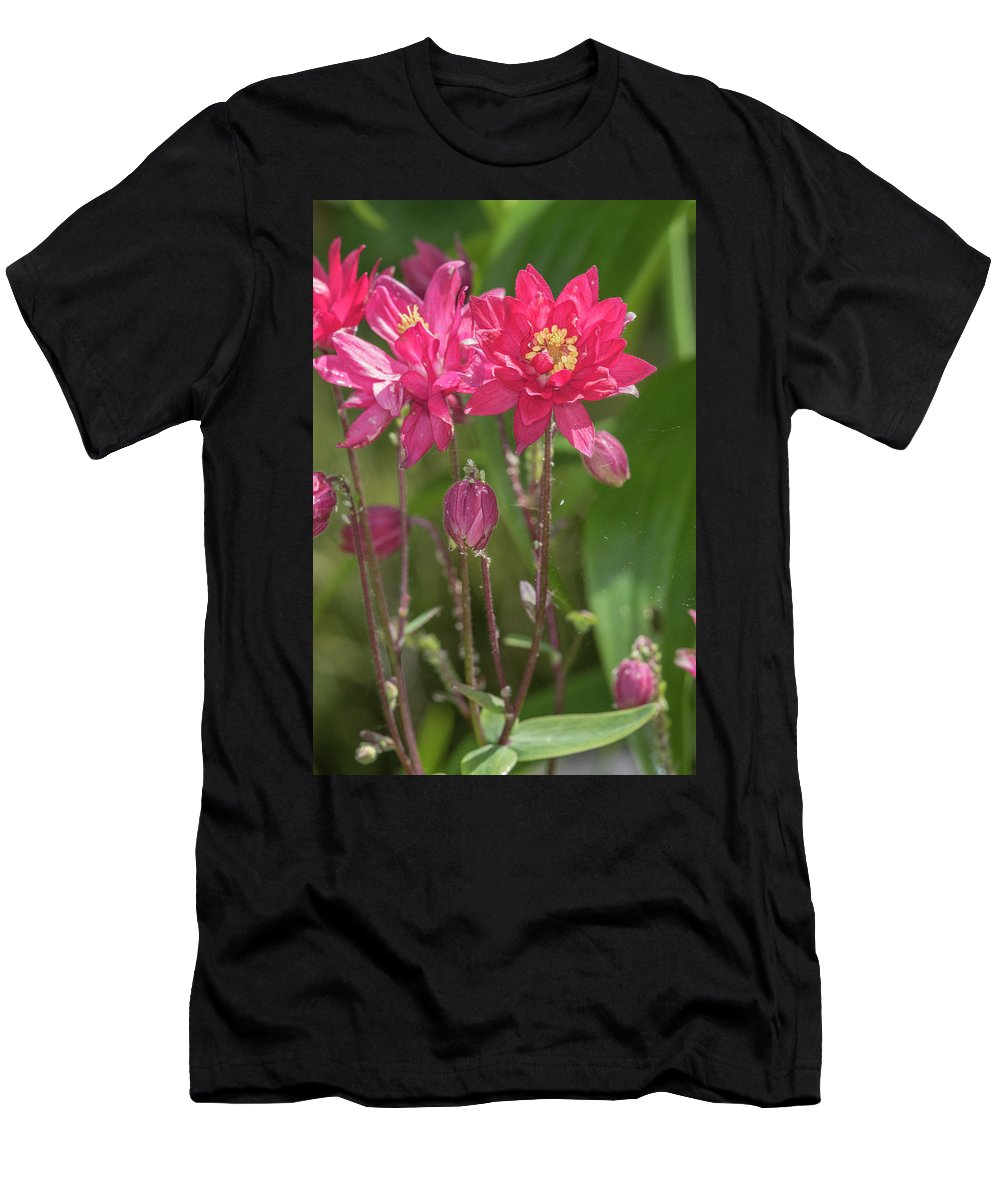 Aquilegia Men's T-Shirt (Athletic Fit) featuring the photograph Aquilegia by Chris Smith