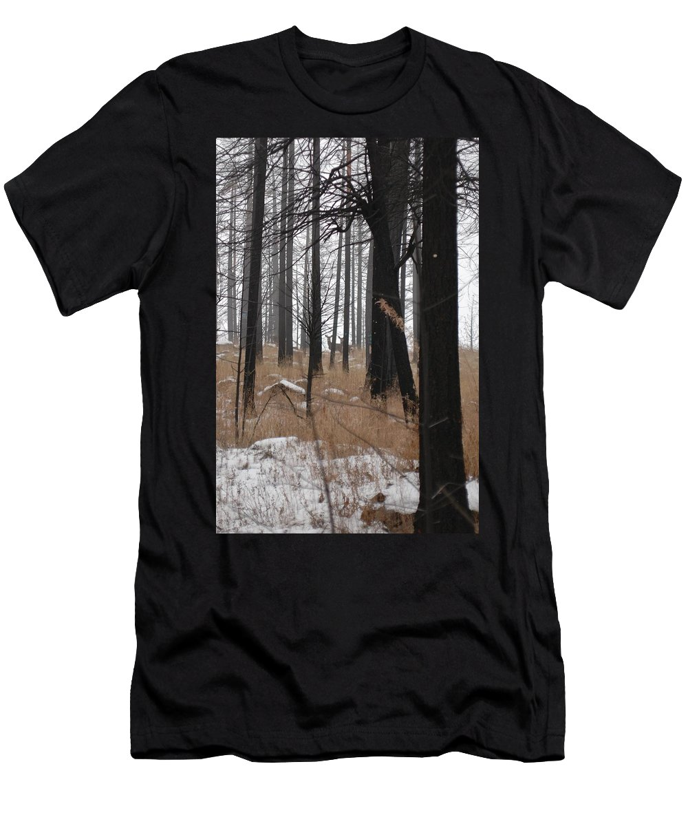 Trees Men's T-Shirt (Athletic Fit) featuring the photograph 2 Deers by Sara Stevenson